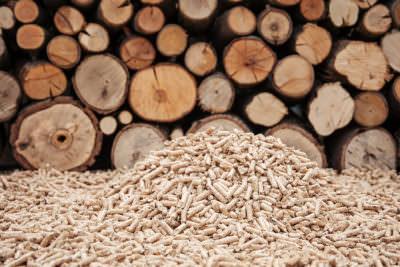 Riscaldare casa a costo zero (o quasi): risparmia con la stufa a legna o a pellet