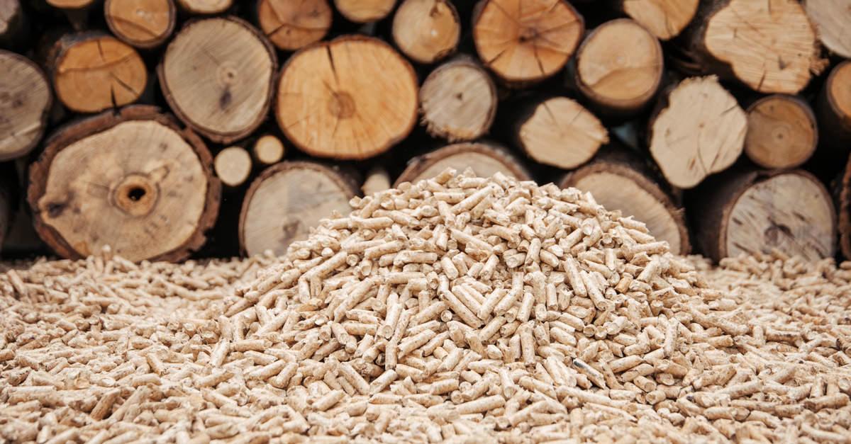 Riscaldamento a costo zero (o quasi): risparmia con la stufa a legna o a pellet