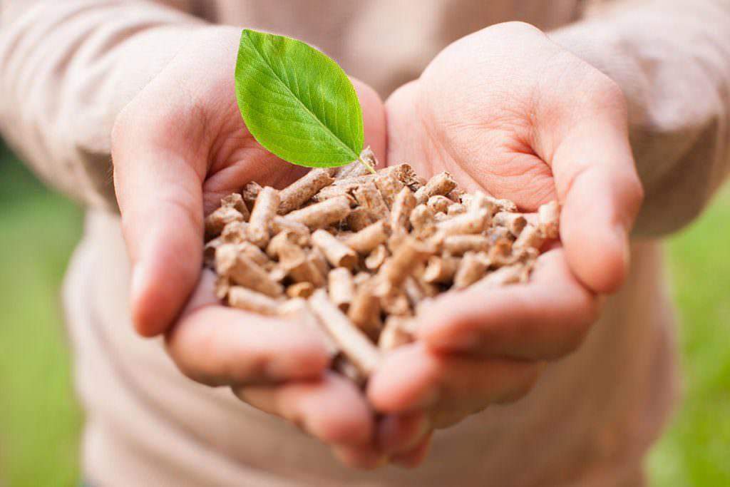 Come scegliere il pellet migliore? Piccola guida all'acquisto consapevole