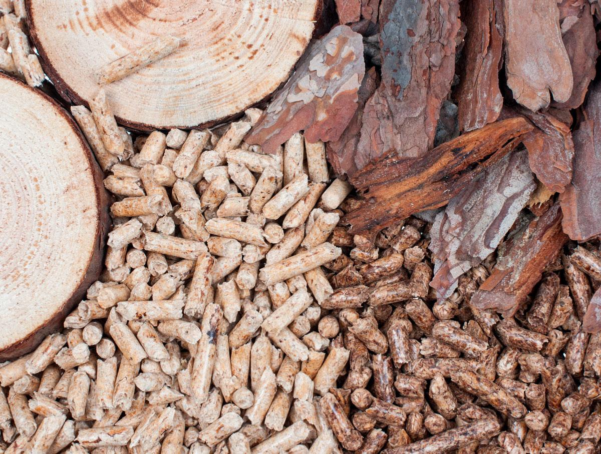 legna_pellet_sostenibilità del riscaldamento a biomassa