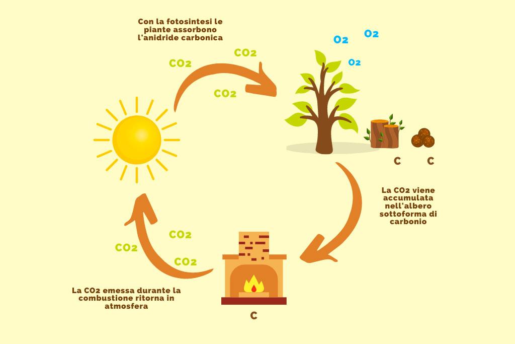 inforgrafica_sostenibilità del riscaldamento a biomassa